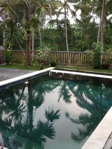swimming pool in Bali